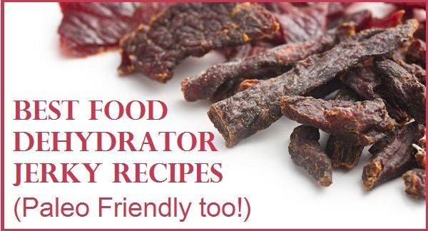 Best Food Dehydrator Jerky Recipes that are Paley-Friendly.  Never buy store-bought jerky again!