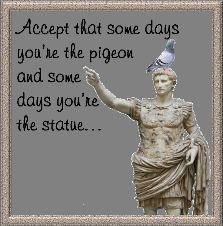 Some days you're the pigeon... mostly I'm the statue!! Today I'm most definitely the statue!