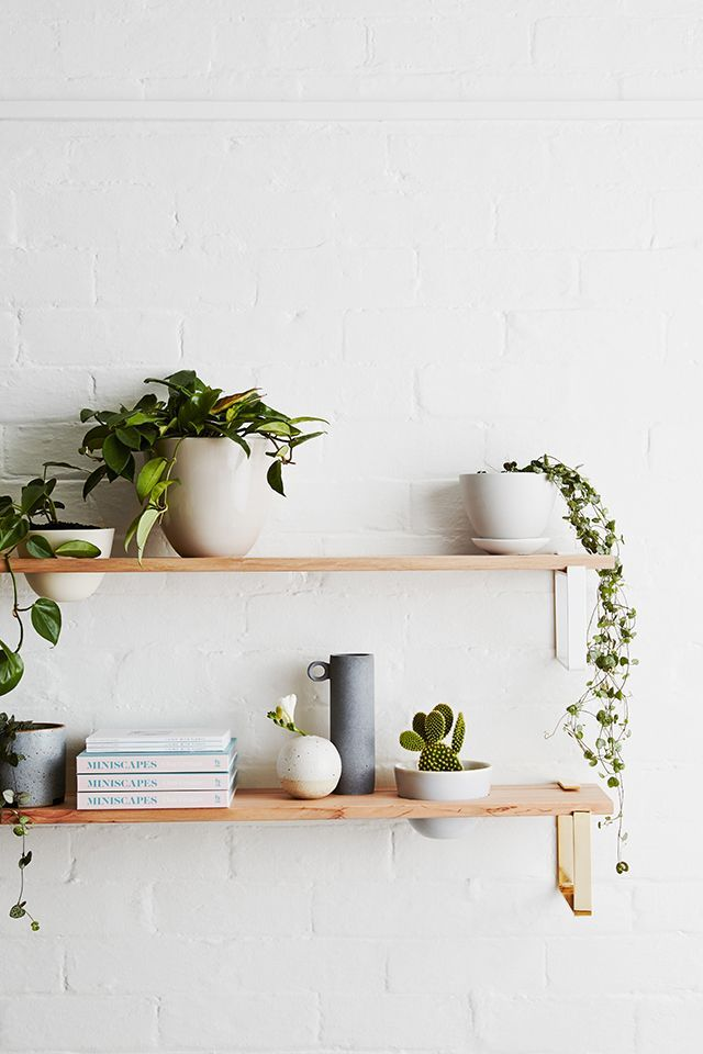 For The Home 7 Stylish Ways To Display Houseplants Link Mansion Pinterest Decor And