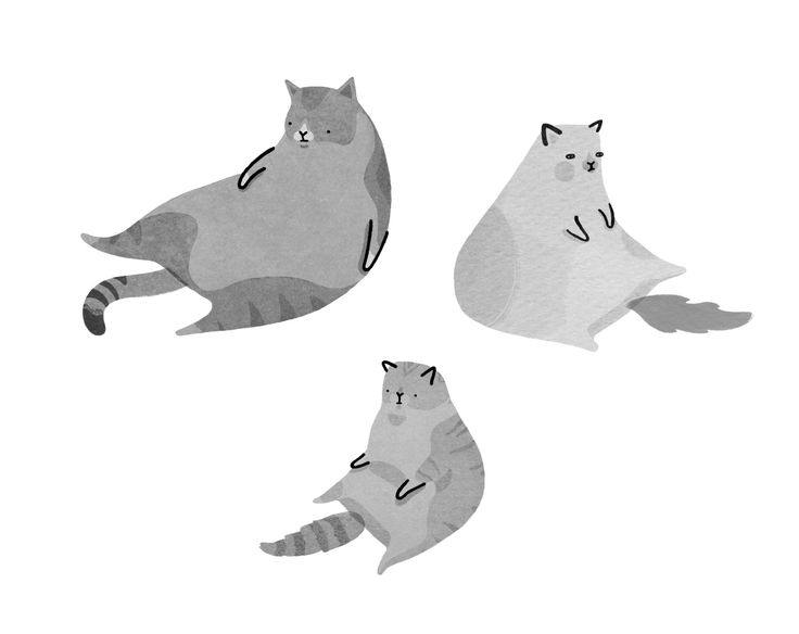 Little Doodles #illustration #cats
