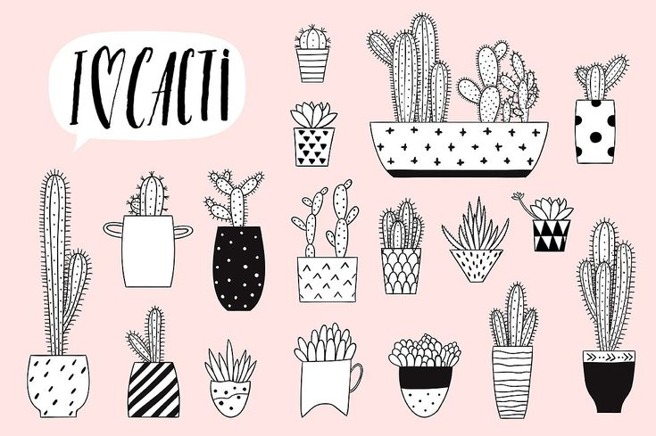 In love with cacti by Artnis on @creativemarket