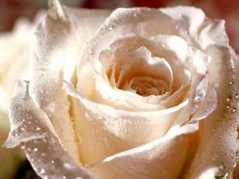 laatste liedje begrafenis mam - YouTube