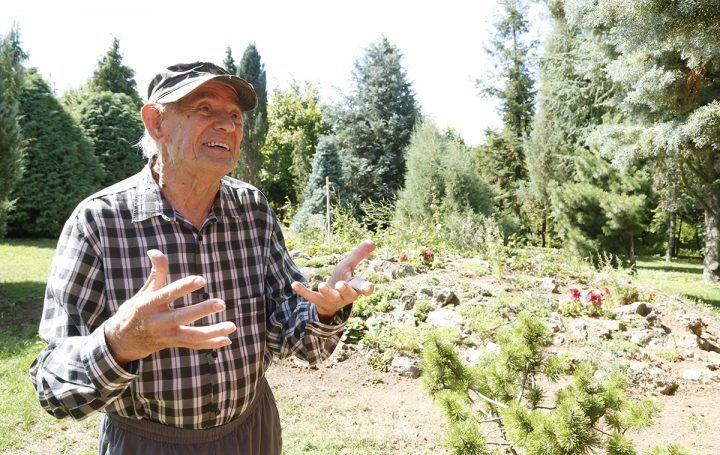 84 éves tulajdonos saját kezűleg gondozza a kertet. Berghauer Tibor nem mindennapi álmot kergetett gyerekkorában: egy látogatható arborétumot szeretett volna létrehozni.