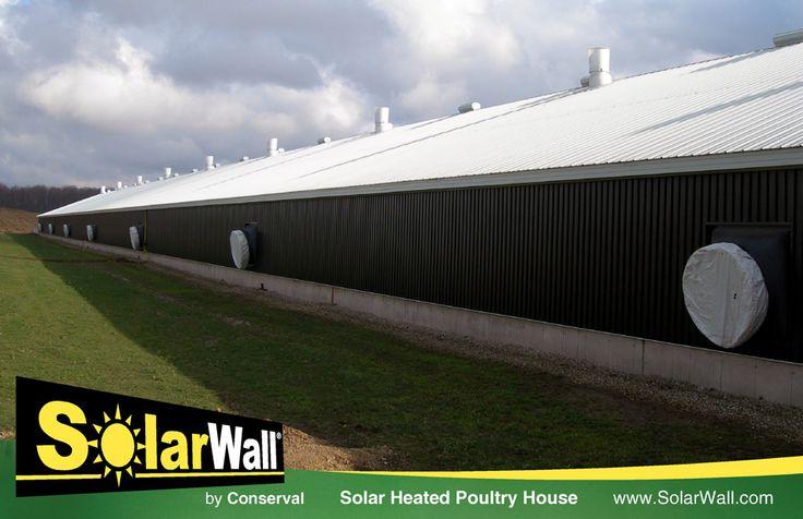 "AOL Image Search result for ""http://solarwall.com/media/imggalbarn/Solar Heated Poultry Barn (06).jpg"""