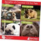pet organic coconut oil for dogs & cats 16-ounce - treatment for itchy skin