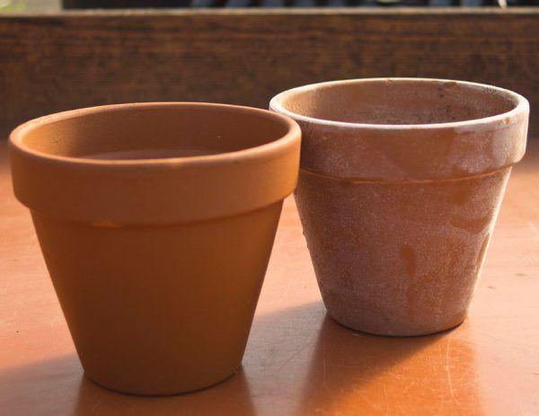 A pesar de su antigüedad las macetas o tiestos de barro o terracota son las que mejor funcionan todavía para el cultivo de la mayoría de las plantas. Entre sus virtudes se encuentran…