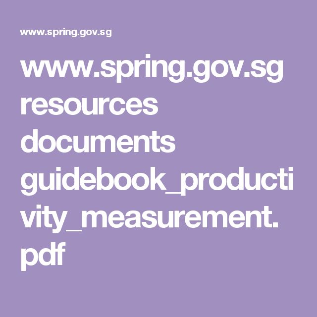 www.spring.gov.sg resources documents guidebook_productivity_measurement.pdf