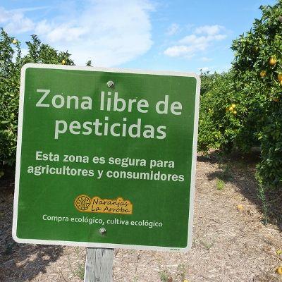 Comer alimentos orgánicos reduce el nivel de residuos de pesticidas en el cuerpo