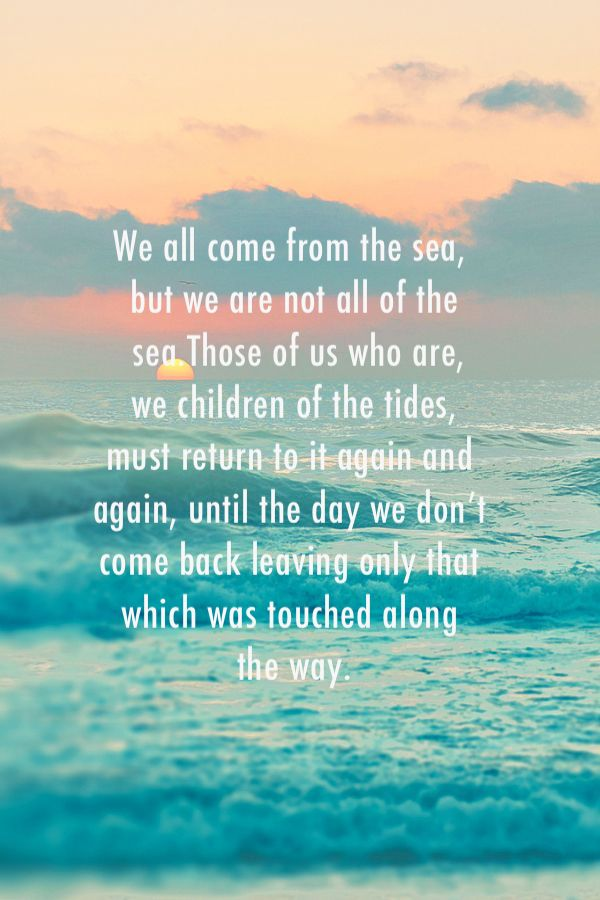 Chasing mavericks quote #bornbythesea #ACSurf