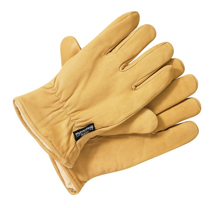 Gants en cuir doublé Dickies GL0200 GL0200