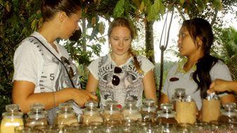 search in label for :: Luwak White Coffee :: | Bali Green Bike Countryside Cycling tour