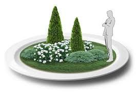 Картинки по запросу туи в садовой композиции