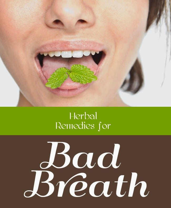 Herbal Remedies For Bad Breath | Medi Tricks