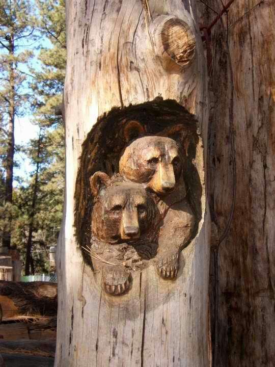 Bear carvings