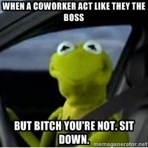 when a coworker act like they the boss but bitch you're not. Sit down.   Kermit the Frog driving