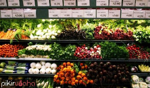 Peluang Usaha Pertanian Organik di Indonesia Makin Berpotensi