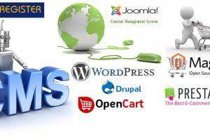 cms web design solutions