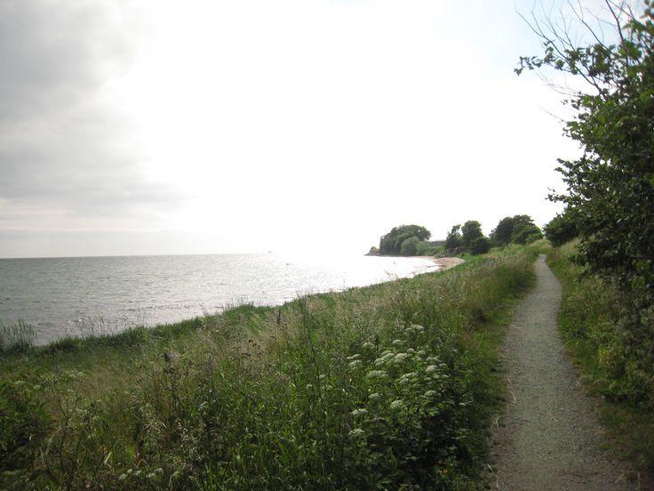 Strandvägen mellan Ystad och Abbekås