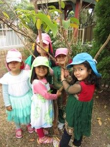 Lidcombe Preschool, NSW. Tree hugging our beautiful trees! #enviroweek13