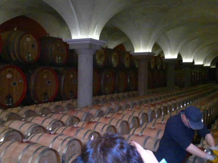 Excursão de grupo com guia ao Museu do Vinho em Bardolino - Lago de Garda.  #Itália #dolomitas #vinhos #vinhositalianos #passeios