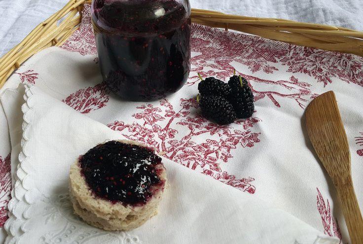 ¿Te animas a preparar este riquísimo dulce de Mora con 3 Ingredientes? Te dejo la receta y probalo! Es libre de gluten y muy fácil de hacer. Sano y sin conservantes.