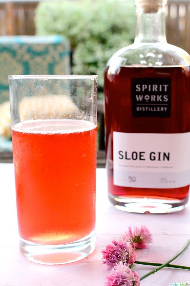 25 best ideas about sloe gin cocktails on pinterest for Easy party mixed drinks