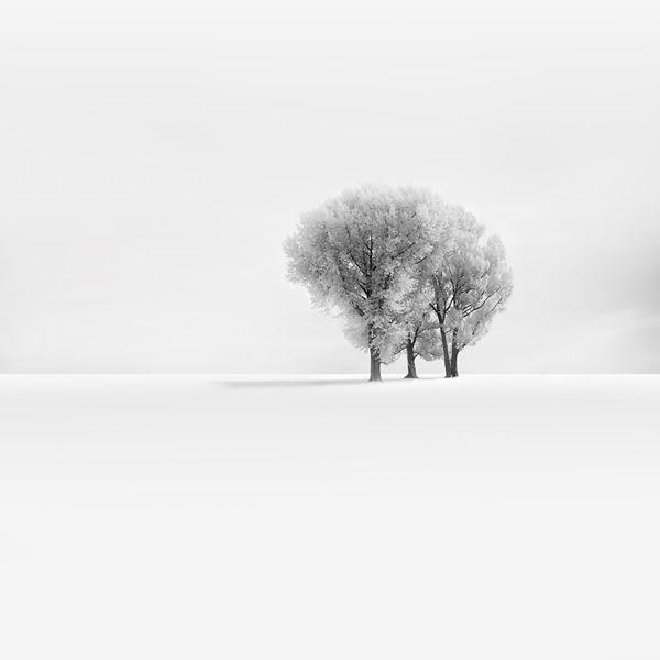 Snowscapes: Photos by Vassilis Tangoulis