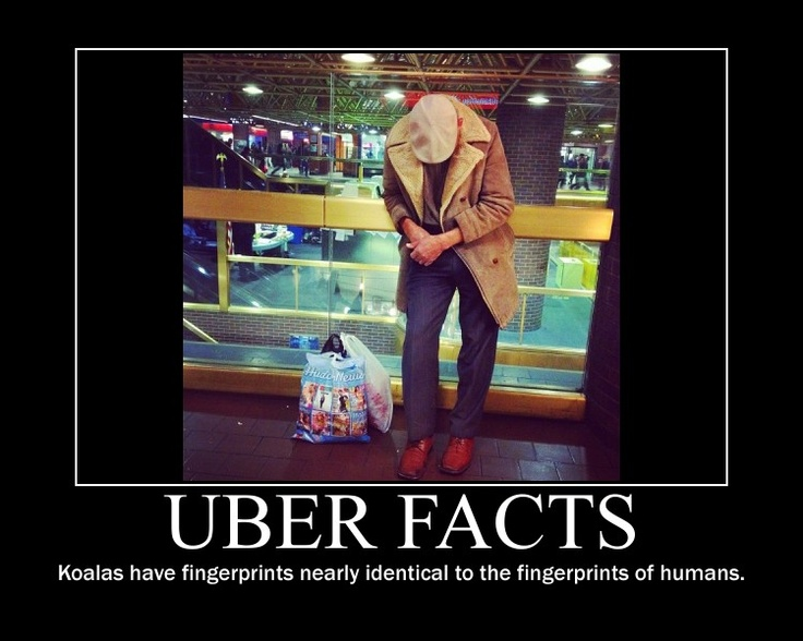 Uber Facts