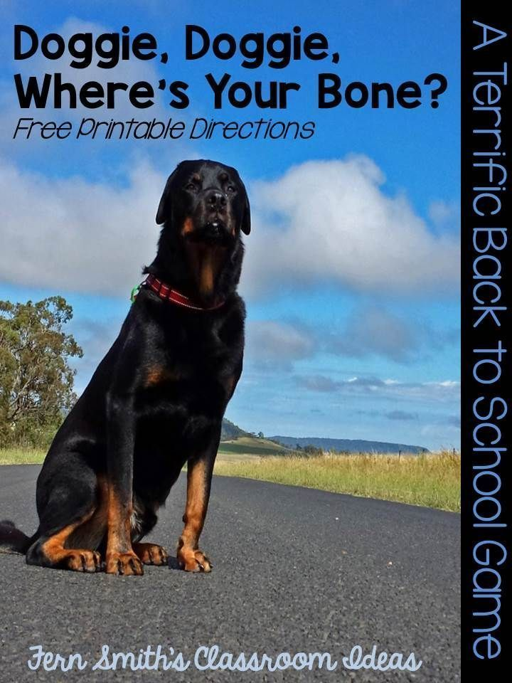Perfect for Back To School.... Printable directions for Doggie, Doggie Where's Your Bone? Terrific to help students learn classmates' names or for a five minute brain break. #Free