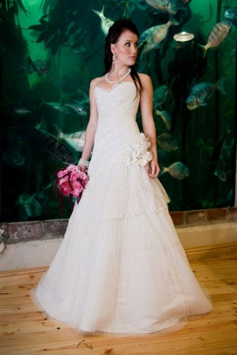 Weddings at the Two Oceans Aquarium – Gallery – Two Oceans Aquarium Cape Town, South Africa