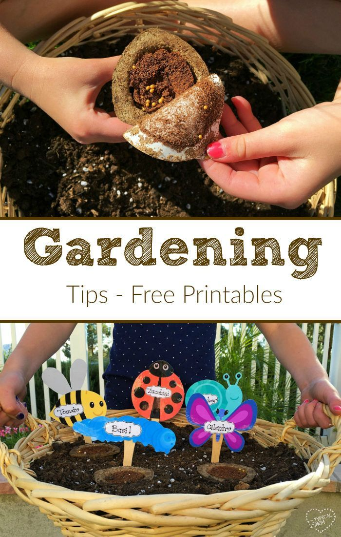 121 best garden activities images on pinterest | nature activities
