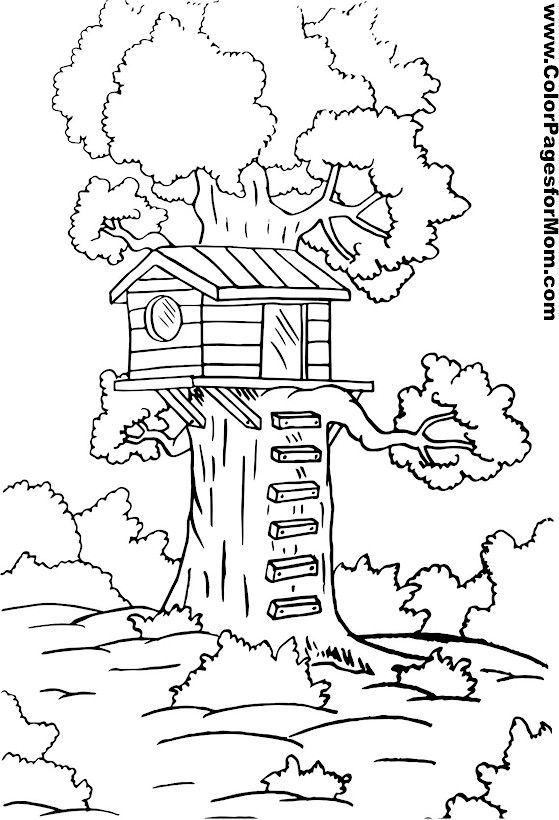 tree coloring page 3 - Coloring Page Tree 2