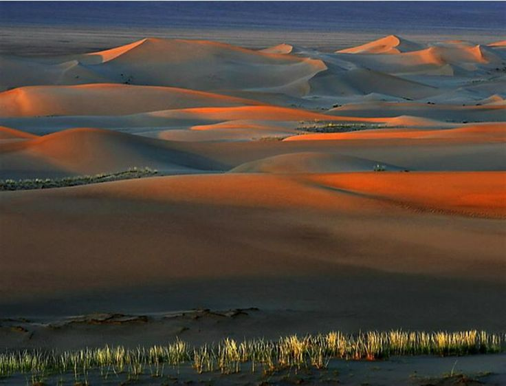 desert-gobi
