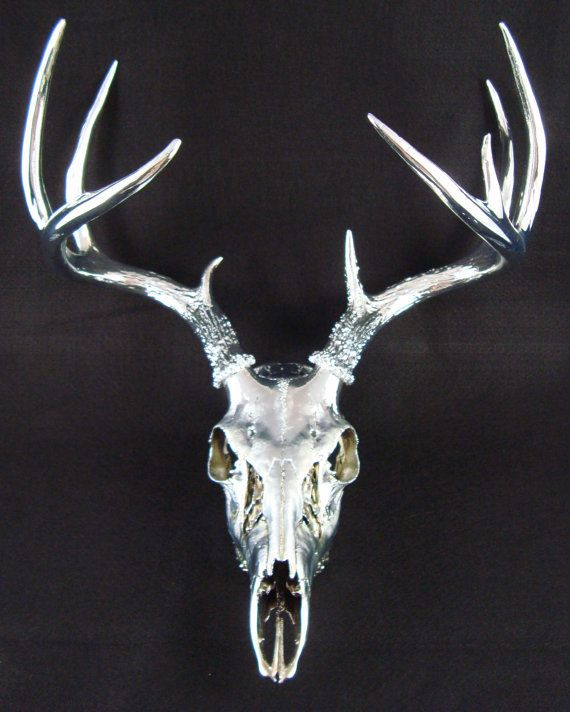Obviously I'm in love with deer skulls and antlers. This one is painted in silver chrome. It's selling for $725 on Etsy... Hmm...