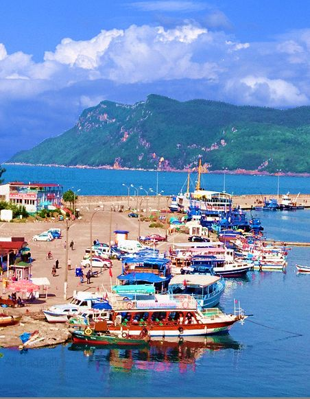 Amasra gezi tekneleri.