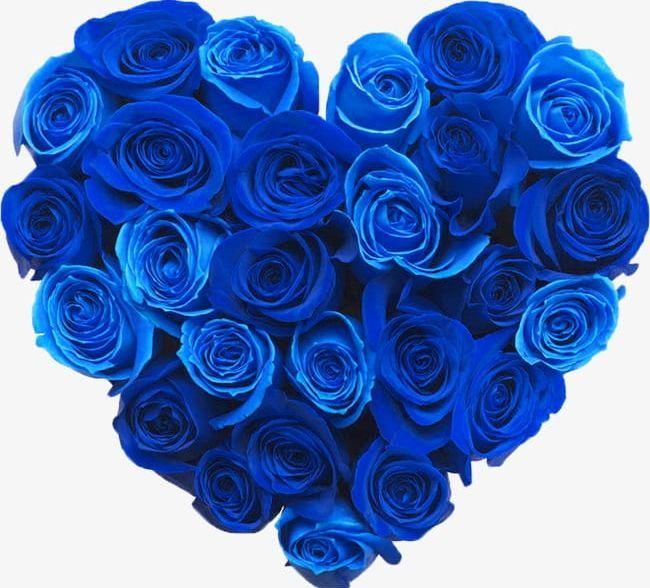 Bluelover Png Blue Bluelover Clipart Blue Rose Flowers Heart Shaped Blue Roses Wallpaper Rose Wallpaper Flower Pictures