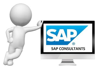 SAP FI/CO Training: What you need to be a SAP Consultant?