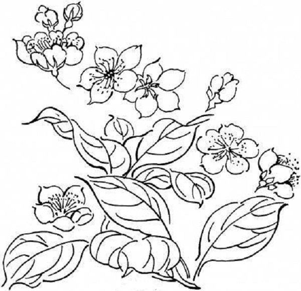whimsical flowers coloring pages - photo#20
