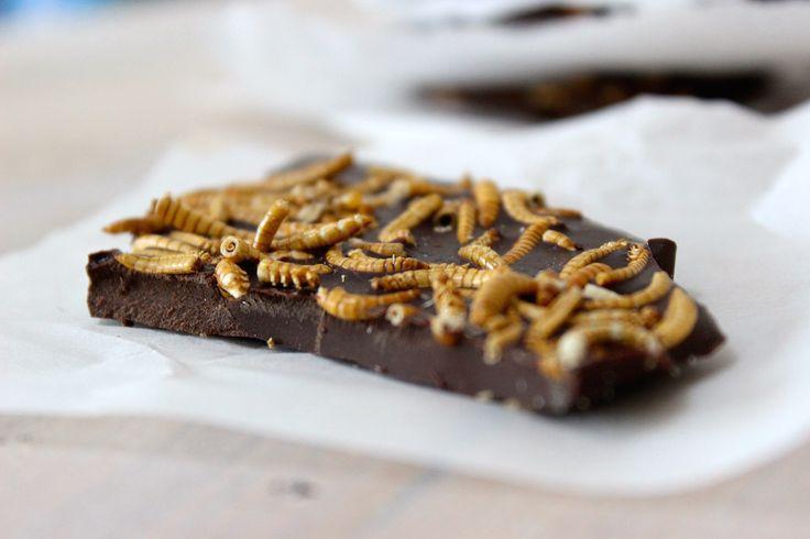 Chocolade met meelwormen