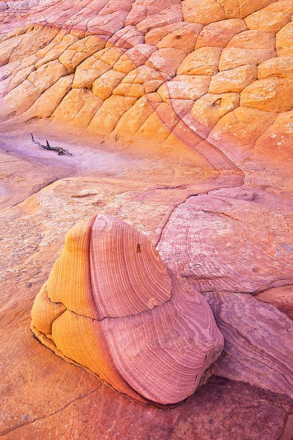 """..Rock Candy: Deep in the remote Escalante Grand Staircase Wilderness you can find some of the most unique and dramatic examples of mother nature's handy work. Sitting silent in this largely unexplored region, this little two-foot tall rock is merely a """"taste"""" of the many geological delights and oddities waiting to be explored. by Stephen Oachs.."""