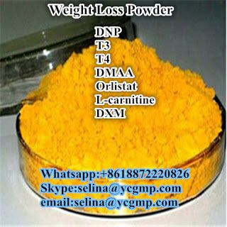 anabolic steroid and bodybuilding supplement:  Legal Weight Loss Anabolic Steroids Powder DNP 2 ...