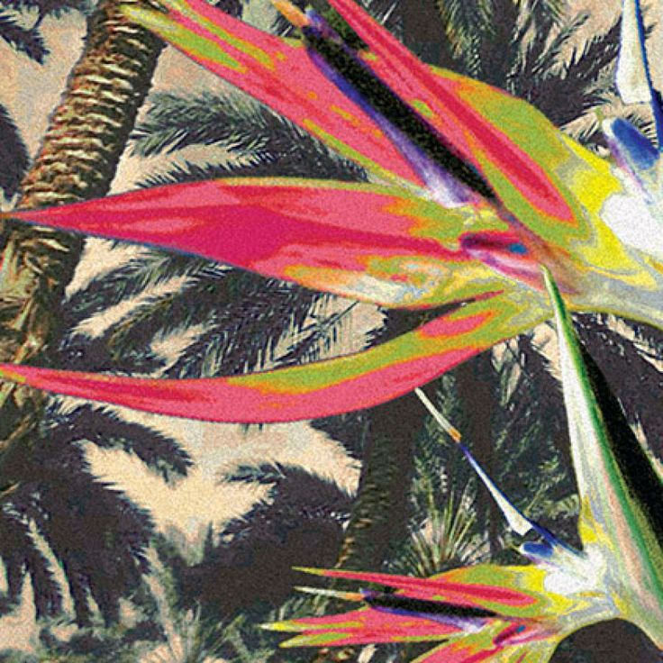 palm trees and bird of paradise spinning around - detail