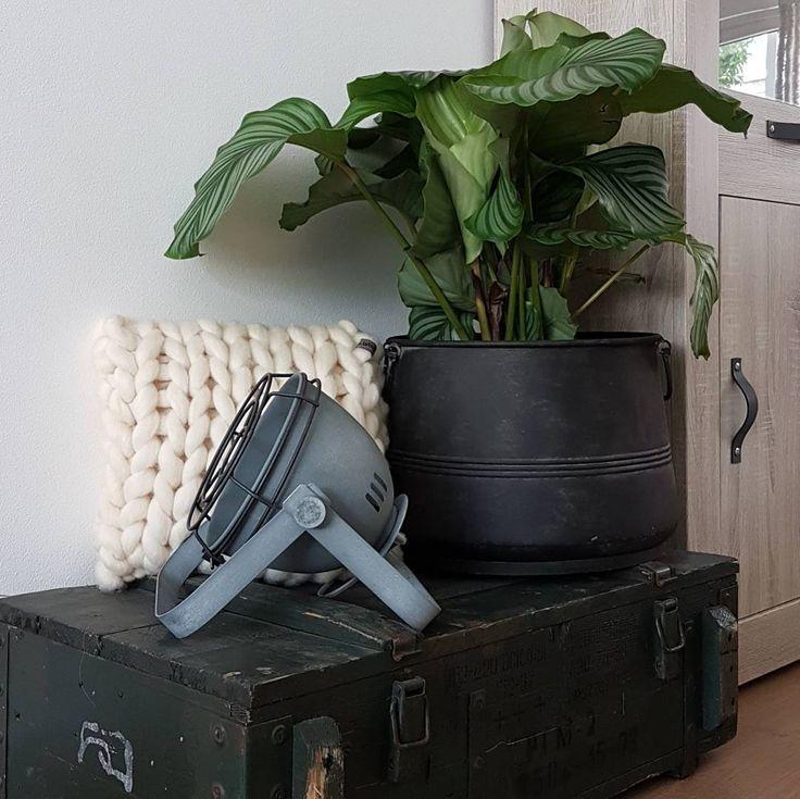 #kwantuminhuis Tafellamp CADMUS > https://www.kwantum.nl/verlichting/tafellampen en pot MACON > https://www.kwantum.nl/wonen/decoratieve-opbergers/overige-opbergers @ Like Comment 54 likes huisjeboompjepommetje