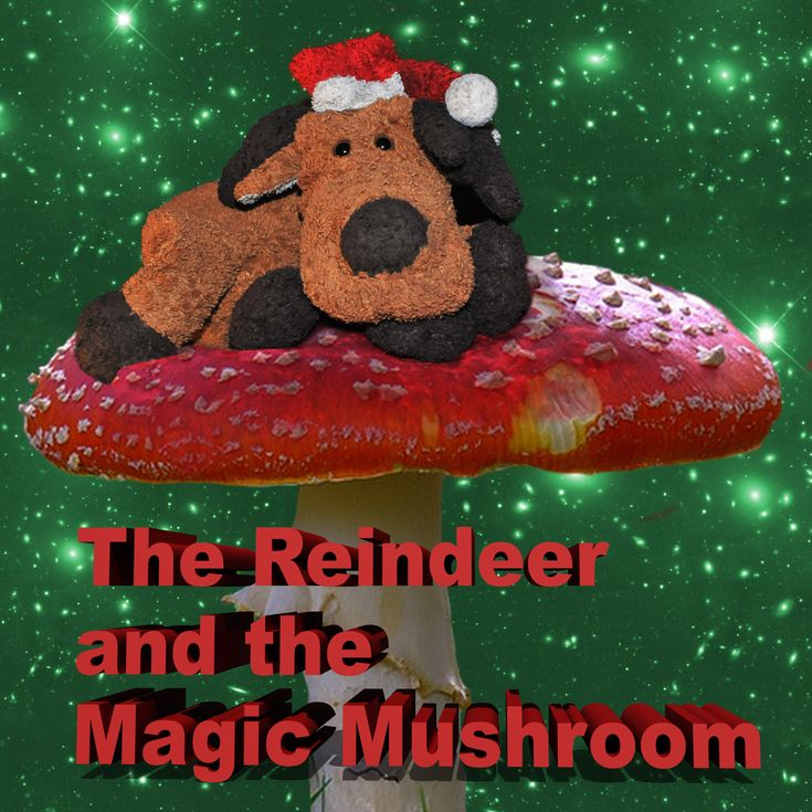 This links to the podcast of Jason Stoneking's December 12th, 2013 appearance on DJ Latitude's Radio Pirata, during which he reads his anti-consumerist psychedelic Christmas essay, The Reindeer and the Magic Mushroom. Happy Holidays!