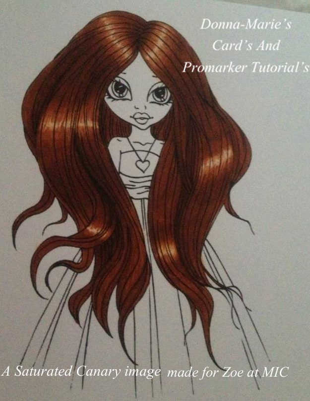 Tute on Donna's facebook page. Promarker colours for hair - OATMEAL,GINGER,SPICE, TERRaCOTTA AND CHESTNUT