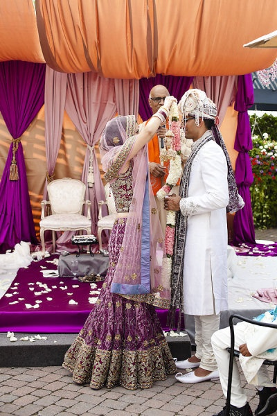 gorgeous purple bridal lengha with groom in sherwani - indian bride putting the garland around the grooms neck