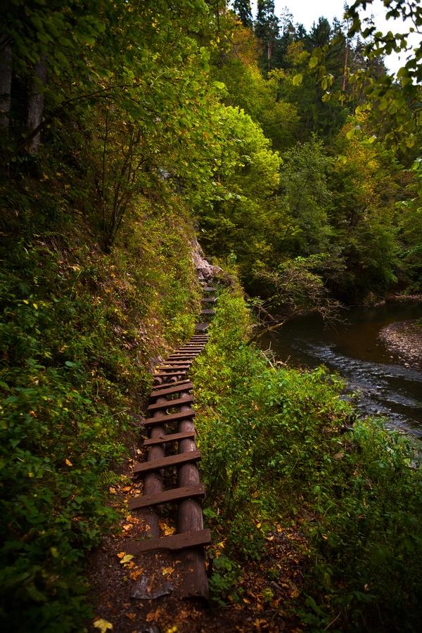 Slovensky Raj, Slovakia http://www.travelbrochures.org/266/europa/vacationing-in-slovakia