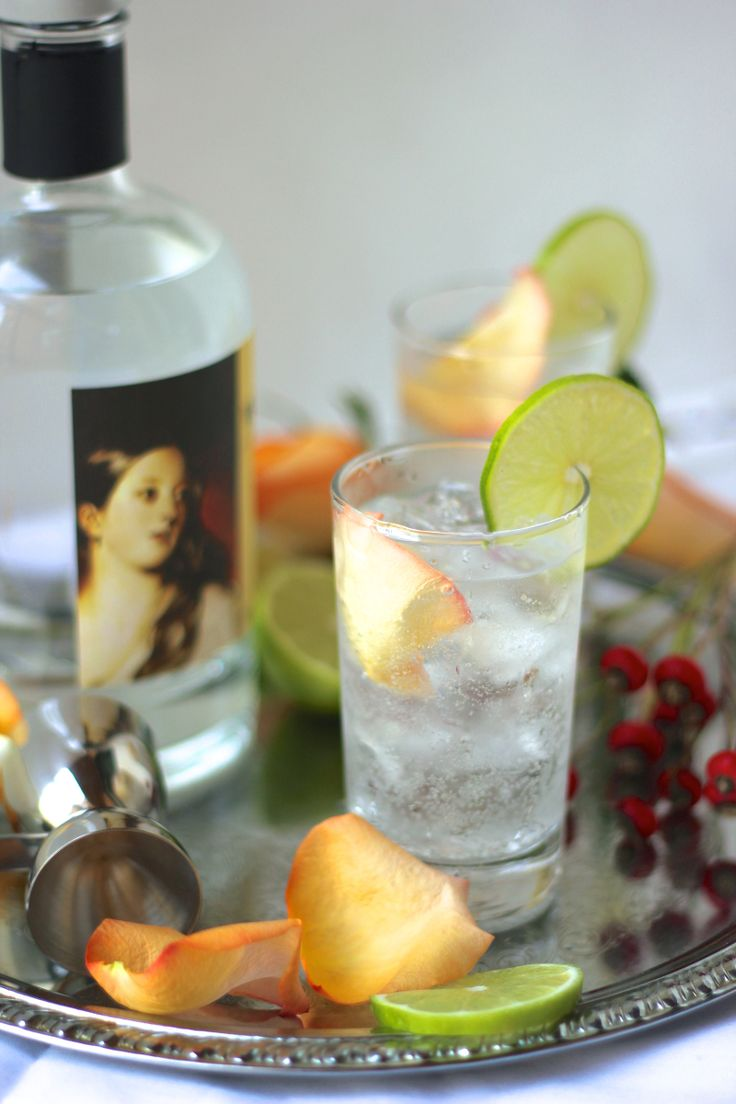 The Best Gin & Tonic I've Ever Had (it has roses and lime!) - SheEats.ca Get the recipe here --> http://sheeats.ca/2014/12/gin-and-tonic-recipe/