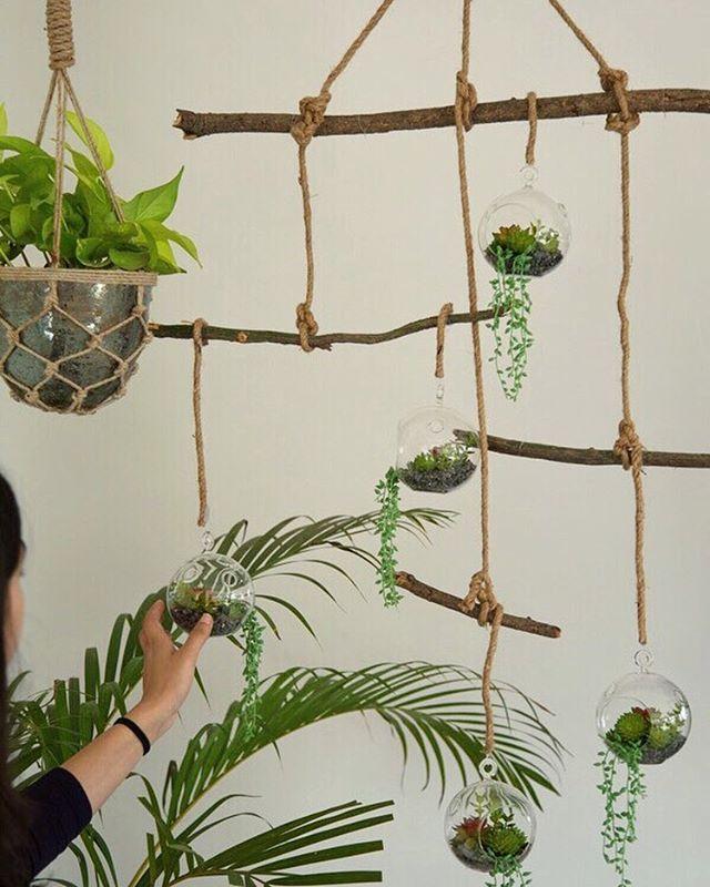 We built a terrarium mobile for the TWC office  #DIY #terrarium #greenery #indoorplants #itsallgreen #greenoffice #homedecor #decorideas #decoronabudget #twcstudio @thewishingchair