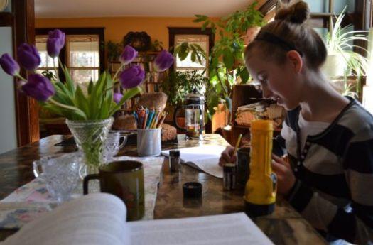 essay adolescence education